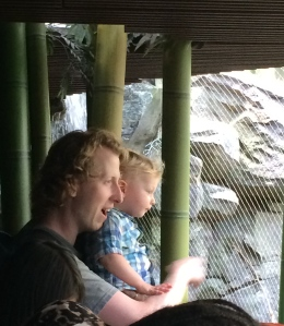 Daddy and son at the zoo