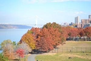fall leaves and GW bridge